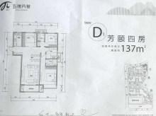 五洲芳华户型图