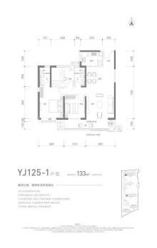 碧桂园云顶YJ125-1户型