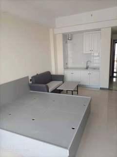(中心区)南风新都汇1室1厅1卫50m²精装修