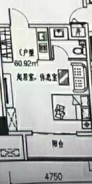 (北城区)国科·星天地1室1厅1卫60.92m²精装修